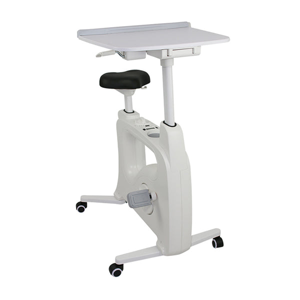 Fitwork Desk Bike