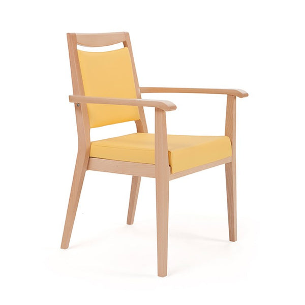 Aero Dining Armchair by Piaval