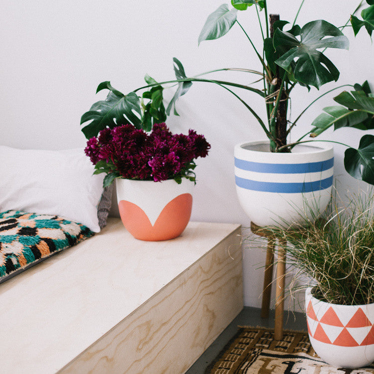 Beach House Pot by Pop and Scott - Innerspace - 1