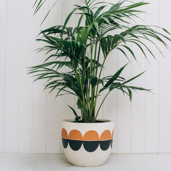 Modernist Pot by Pop and Scott - Innerspace - 1