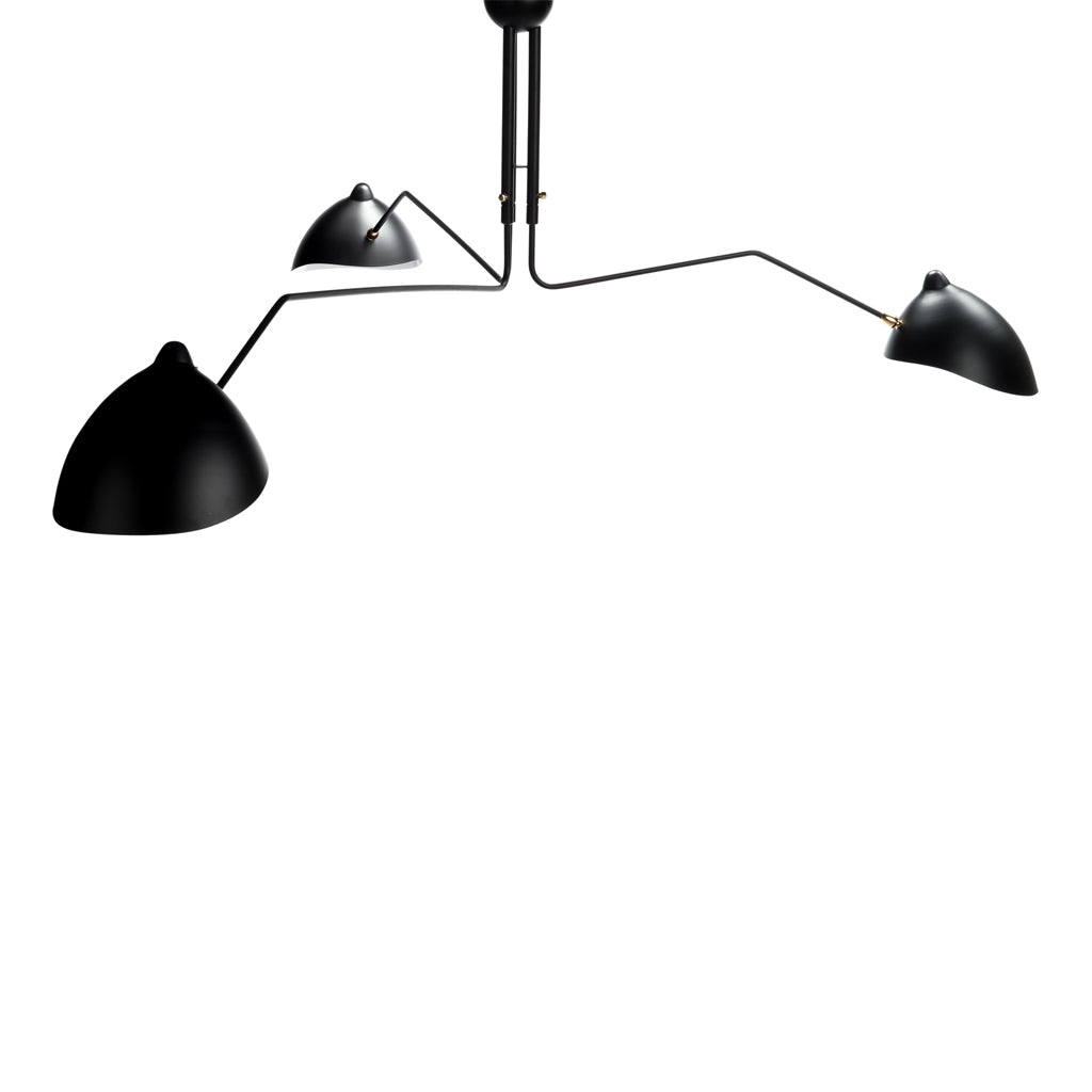 Fly Trap Ceiling Mount Lamp