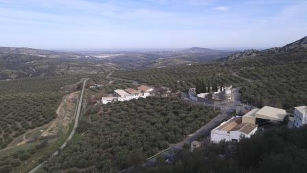 Olive Trees and Processing Mill Zuheros Spain Telegraph Hill