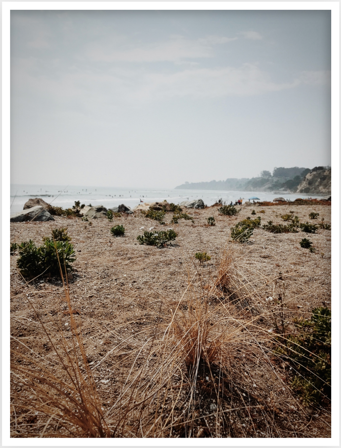 Beach 01, Framed Photograph by Laleh Latini
