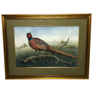"English 20th Century Watercolour Painting ""Cock Pheasant"" Signed Gordon C Turton"