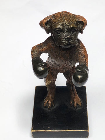 Antique Original Rare Franz Bergman Cold Painted Bronze Of A Boxer Boxing Dog