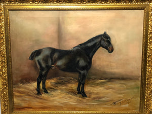 Portrait Study Black Horse In Stable Signed Alice Mary Burton RBA (1893-1968)