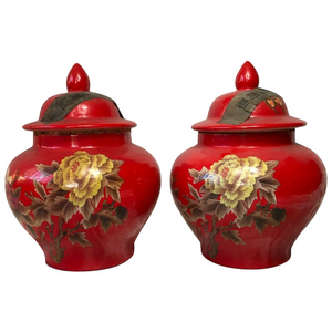 Pair Rare Vintage 20th Century Qing Style Chinese Red Locust Butterfly Tea Caddy Vases