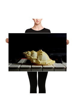 Larghissimo - at a snails pace Canvas - Objet D'Art Online Retail Store