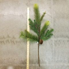 Mx Pine with pinecones & twigs