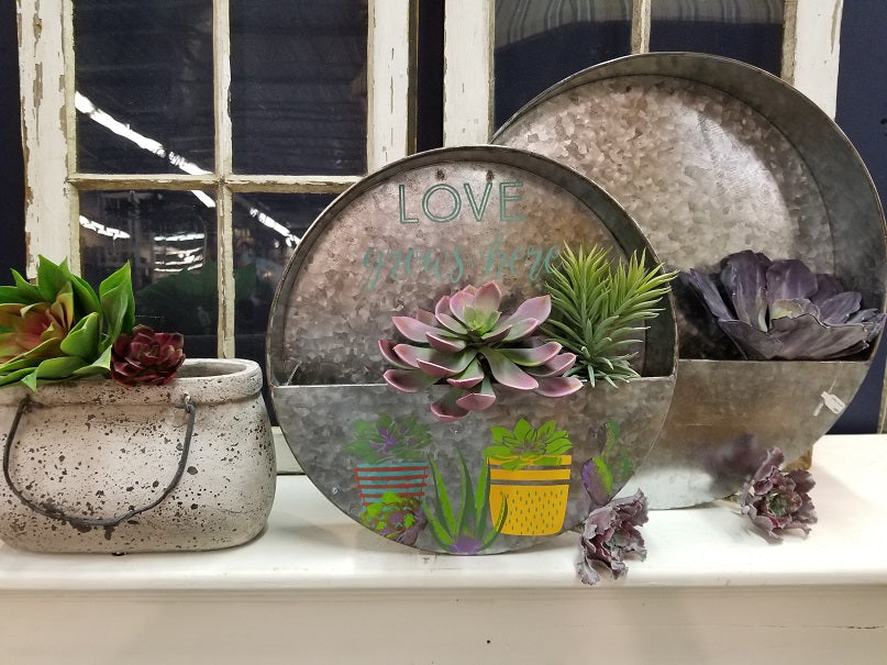 Succulent Wall Planter CLASS * Wednesday, April 25th * 1pm **LARGE SIZE**