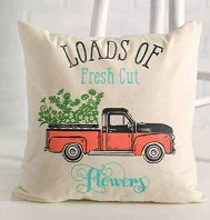 THROW PILLOW CLASS * Wednesday, May 9th * 11am