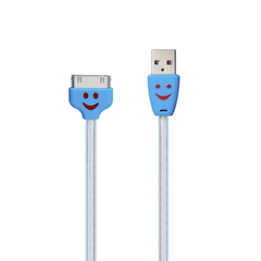 30-Pin to USB Cable - LED