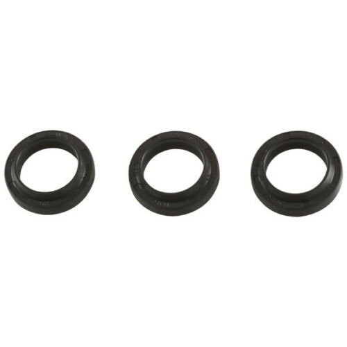 Kit 09144 Oil Seal Kit