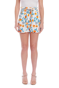 Amanda Uprichard Conrad Shorts - Peaches | Women's Shorts