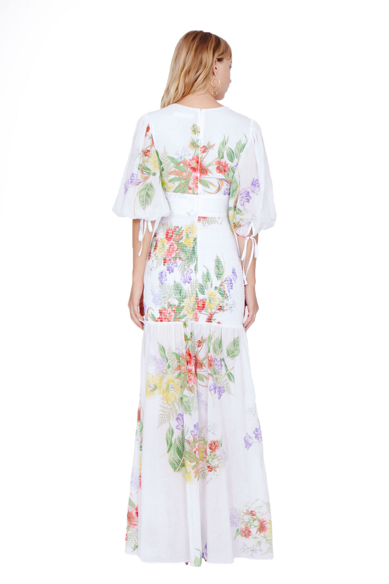 Amanda Uprichard Gala Maxi Dress in Mia Print - Womens Dresses