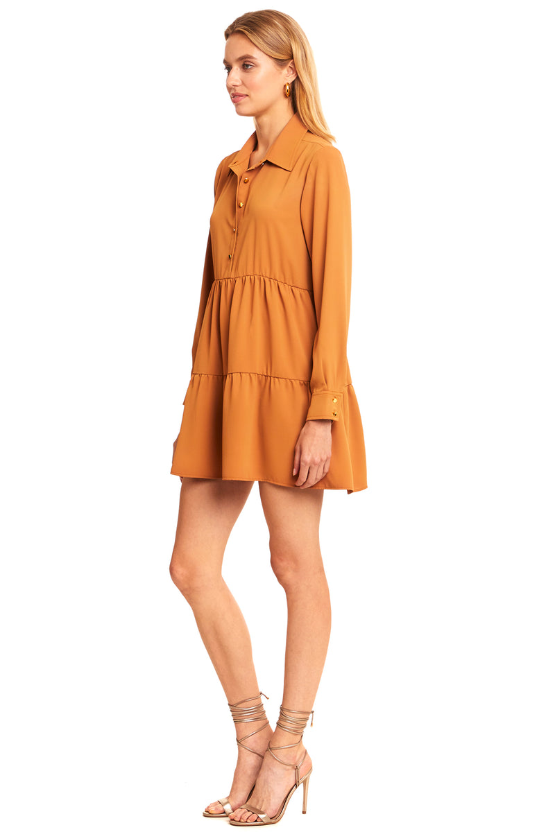 Long Sleeve Pierre Dress