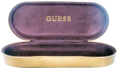 GUESS_BRONZE_GLASSES_CASE