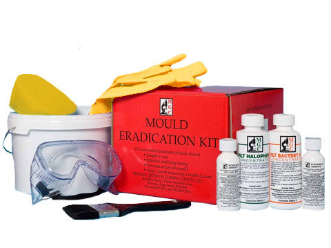 Condensation mould removal kit