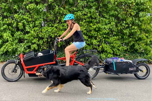 Riese and Muller Load 75 E-Cargo Bike with Burley Coho XC Trailer for Bike Packing