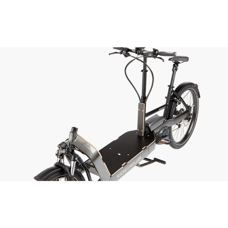 Riese & Müller Electric Bikes Packster 60 Vario-Oregon EBikes