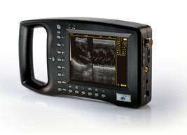 WED-3100 Demo Ultrasound