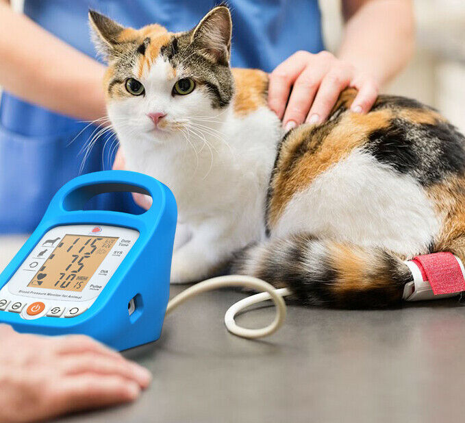 Accurate and Reliable Veterinary Pet Blood Pressure Monitor Sphygmomanometer
