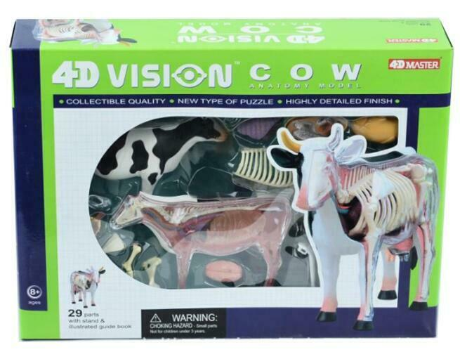 4D Master Cow Anatomy Model Assembly Internal Organ Bone, Veterinary Teaching