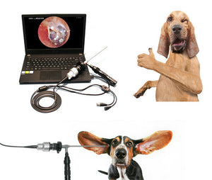 Portable Video Otoscope Veterinary USB ENT Endoscopy Camera, Windows Based
