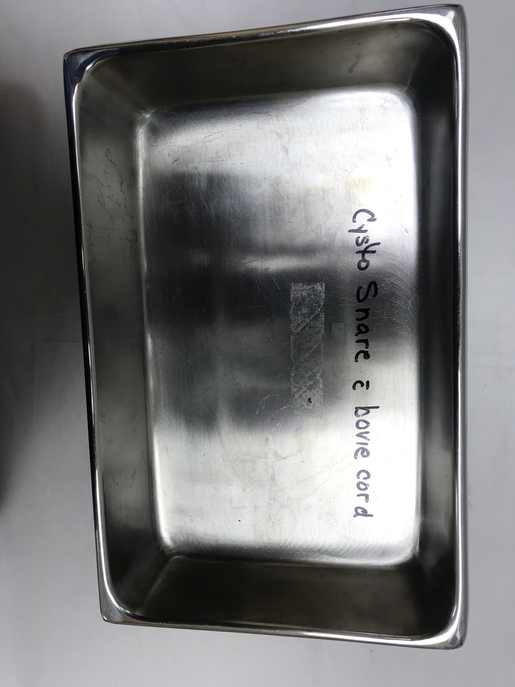 Anchor Stainless Steel Instrument Tray
