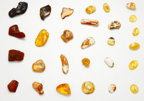 different colors of Baltic amber