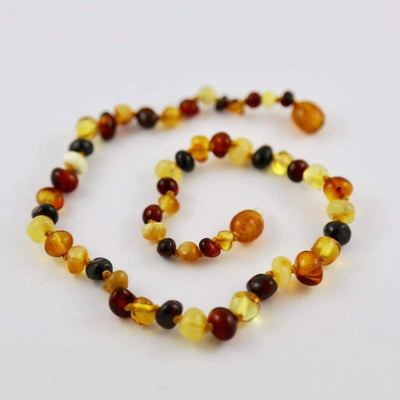 Baltic Amber Multicolored Round - 12 Necklace - Twist Clasp - Baltic Amber Jewelry