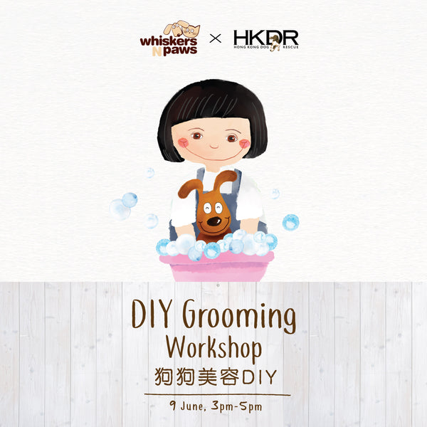 DIY Grooming Workshop