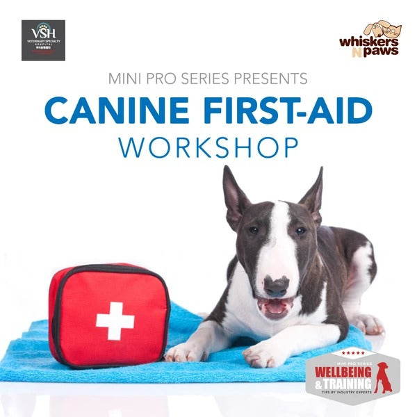 Canine First Aids Training - 17th August, 2019 (Cantonese Session)