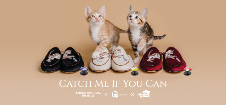 Catch Me If You Can |  Shanghai Tang x LAP x WNP