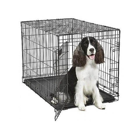 Crates can become a safe place for dogs