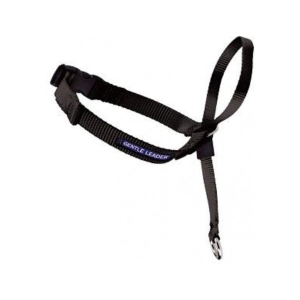 Gentle Leader Head Collar Size : Medium