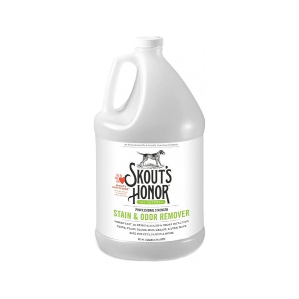 Professional Strength Stain & Odor Remover, Gallon
