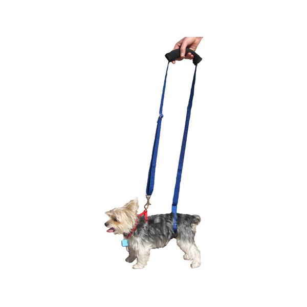 Support & Rehabilitation Harness, Mini
