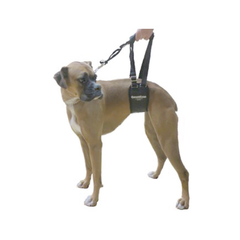 Rehabilitation Harness Small Female