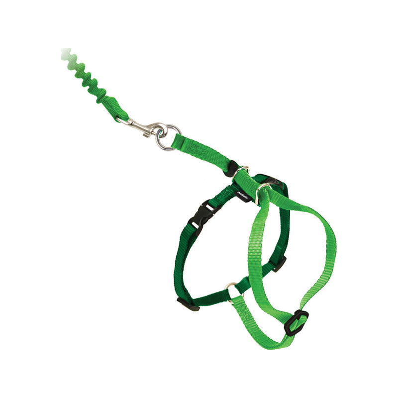 Kitty Harness & Bungee Leash, Color Lime, Medium