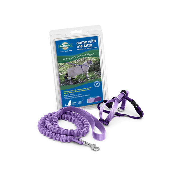 Kitty Harness & Bungee Leash Color : Purple Size : Large