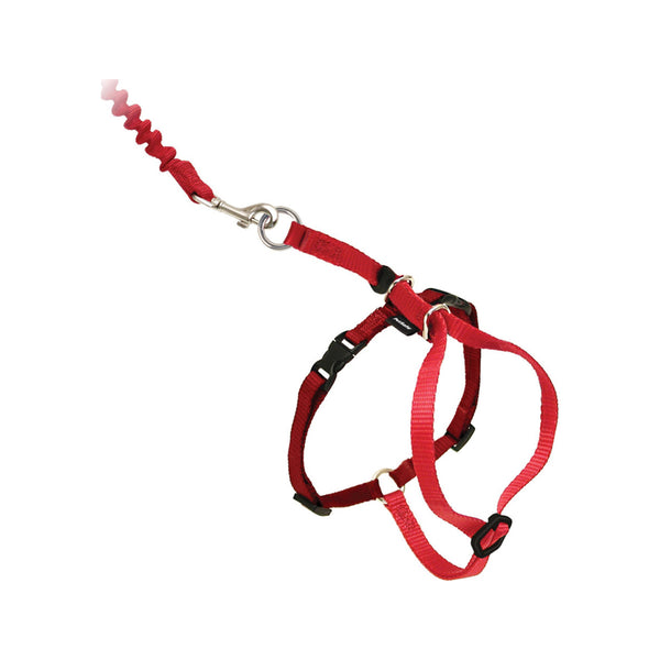 Kitty Harness & Bungee Leash, Color Red, Medium