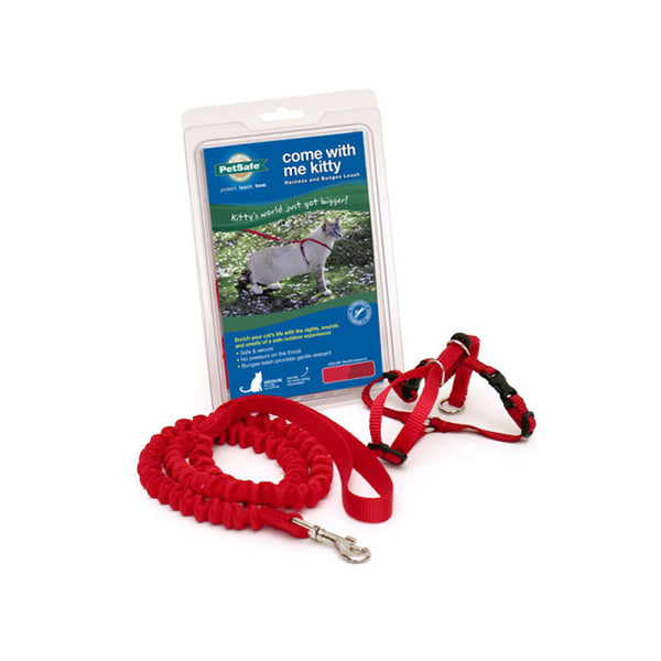 Kitty Harness & Bungee Leash, Color Red, Large