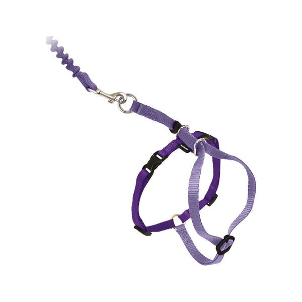 Kitty Harness & Bungee Leash, Color Purple, Large