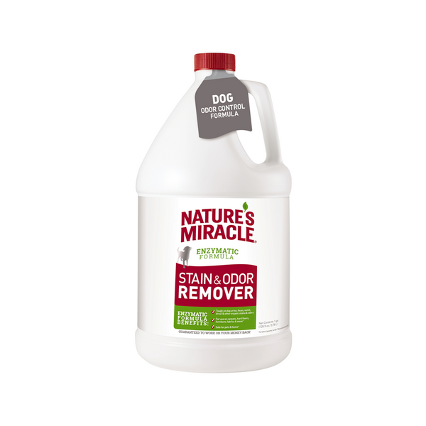Stain & Odor Remover, 1 Gallon