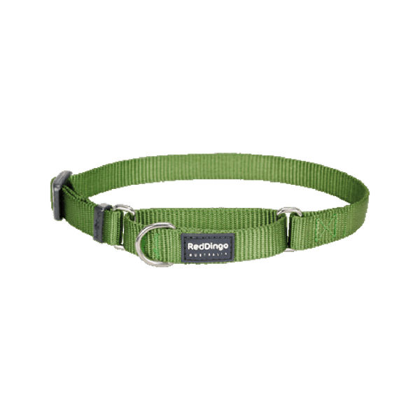 Classic Martingale Collar Color: Green, Small