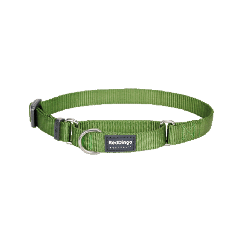 Classic Martingale Collar Color: Green, Medium