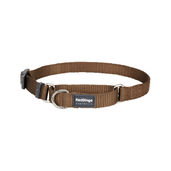 Classic Martingale Collar Color: Brown, Medium