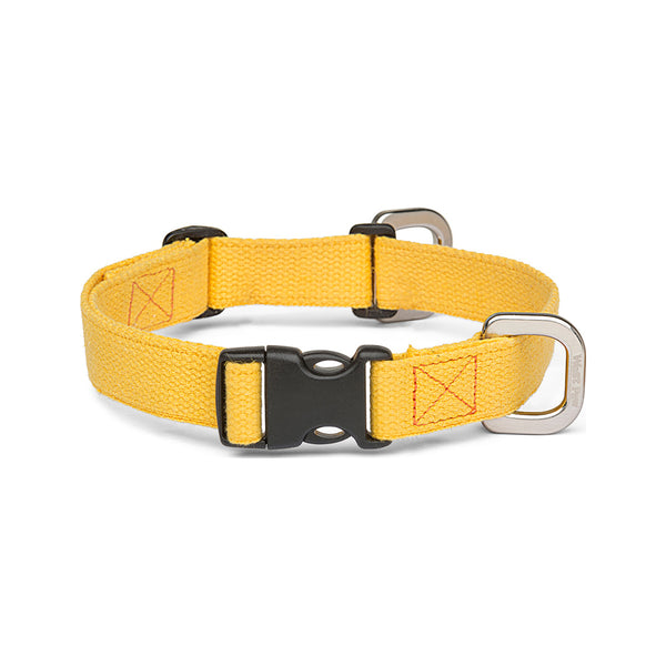 Strolls Collar w/ Hemp Color Goldenrod, Small