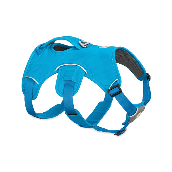 Web Master Harness, Color Blue, Medium